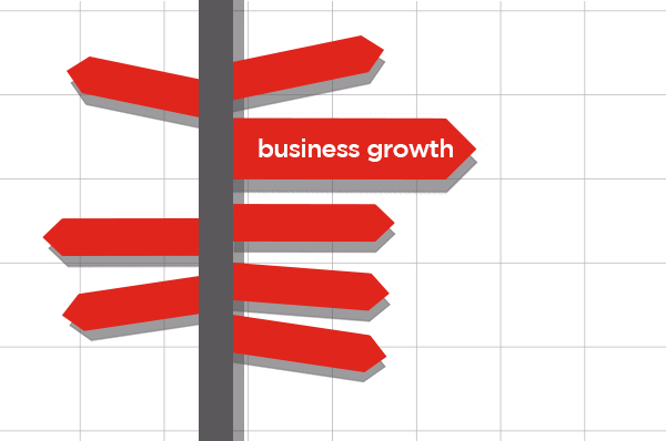 growth strategy for smaller businesses
